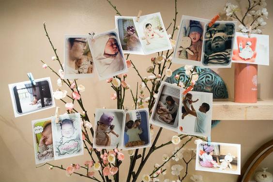 fotobaum babys 564